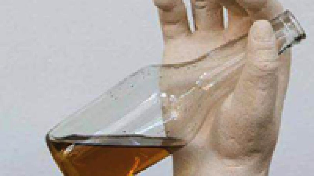 Succo di olive: una guida completa per conoscere l'olio