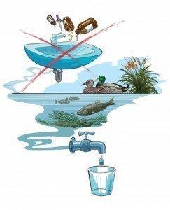 inquinanti ambientali ubiquitari