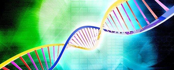 Esiste un gene che predispone ai chili di troppo?
